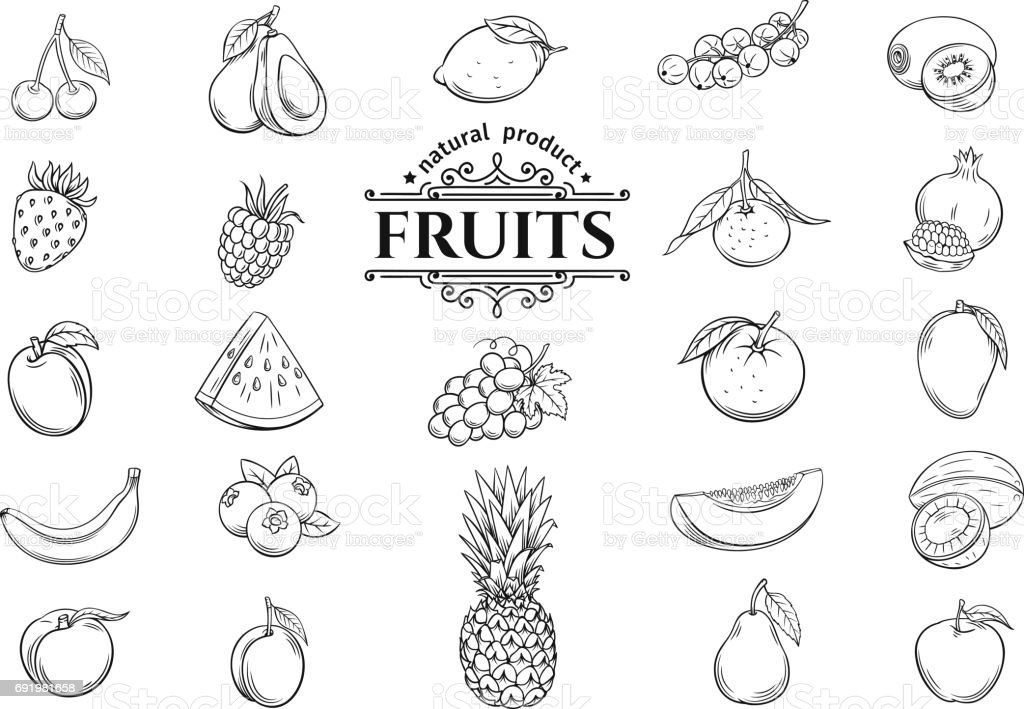 Vector hand drawn fruits icons set vector art illustration