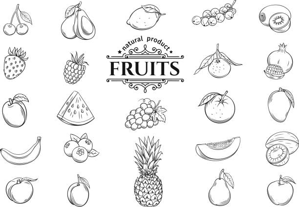 vector hand drawn fruits icons set - fruit icon stock illustrations, clip art, cartoons, & icons