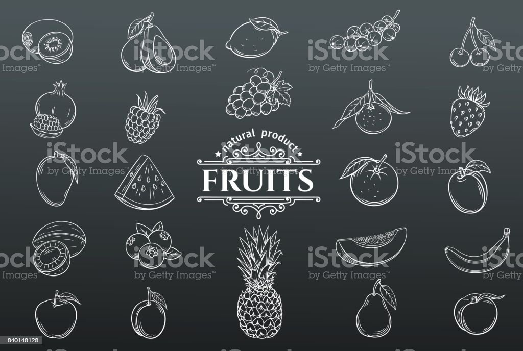 Vector hand drawn fruits icons set. vector art illustration