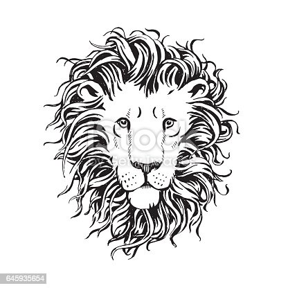134 Drawing Of The Lion Face Outline Illustrations Royalty Free Vector Graphics Clip Art Istock Lion aggressive face logo icon. 134 drawing of the lion face outline illustrations royalty free vector graphics clip art istock