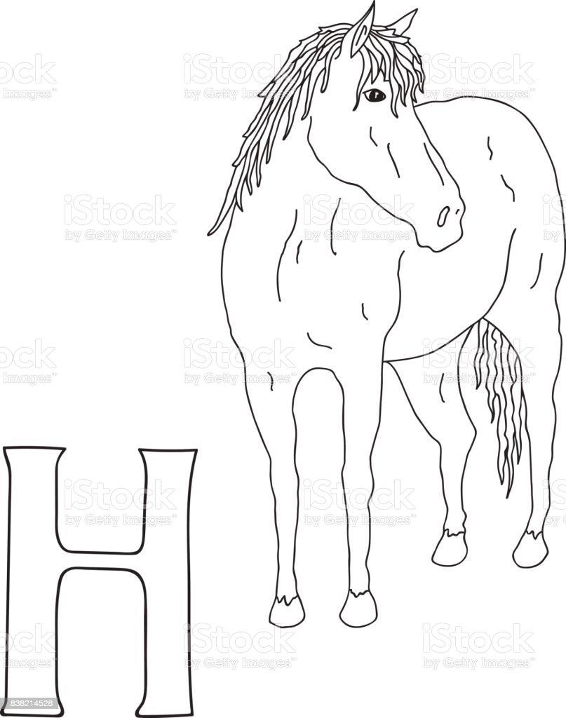 Coloriage Cheval Realiste.Main De Vecteur Dessine Illustration Majuscule H Sur La Carte De