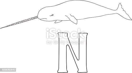 istock Alfabeto letra N-narwhal, concepto de corte de papel ...