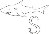 Vector hand drawn illustration capital letter S on alphabet card. Black and white realistic shark isolated. Kids ABC, school education. Coloring page