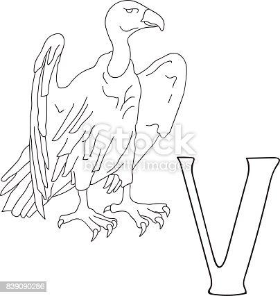 🔥 Imagen de Mano de vector dibujado ilustración letra V en tarjeta ...