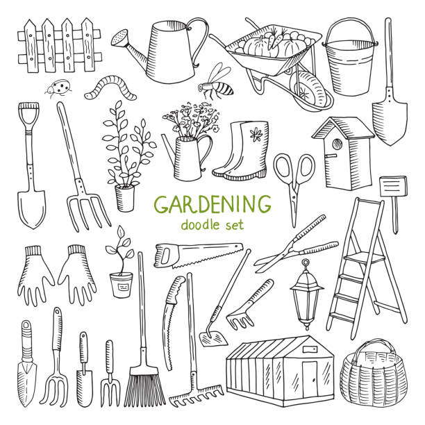 ilustrações de stock, clip art, desenhos animados e ícones de vector hand drawn illustrations of gardening. different doodle elements set for garden work - gardening