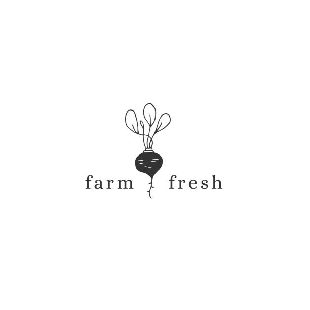 Vector hand drawn label template, beet. Farm and organic food theme. Vector hand drawn label template, beet. Farm and organic food theme. Isolated symbol for business branding and identity, for farmers markets, fairs, and grocery stores. farmer's market stock illustrations