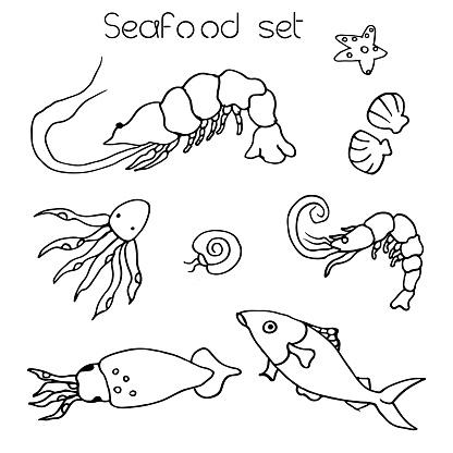Vector hand drawn octopus, squid, shrimp and fish illustrations