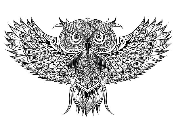 vector hand drawn owl - black and white owl stock illustrations, clip art, cartoons, & icons