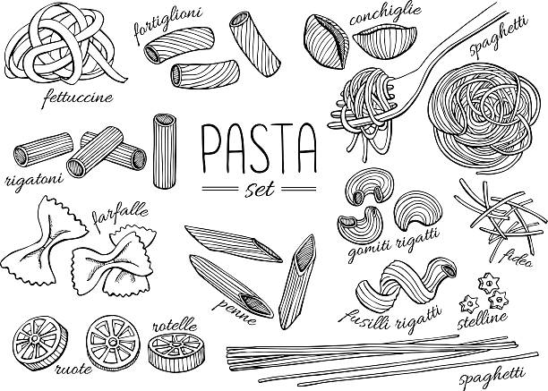 Vector hand drawn pasta set. Vintage line art illustration Vector hand drawn pasta set. Vintage line art illustration. tortellini stock illustrations