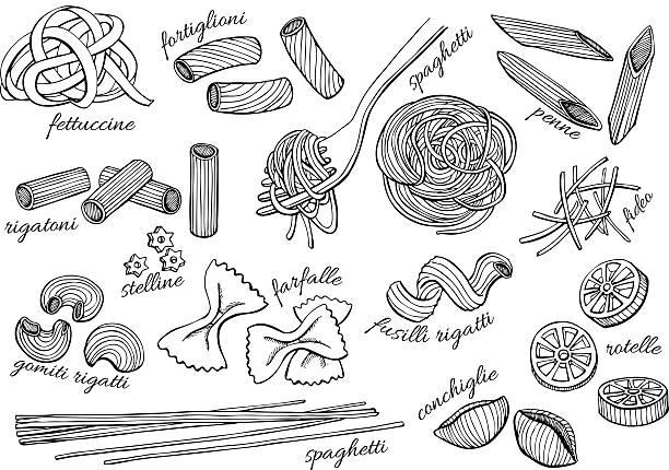 Vector hand drawn pasta set. Vintage line art illustration Vector hand drawn pasta set. Vintage line art illustration. cannelloni stock illustrations