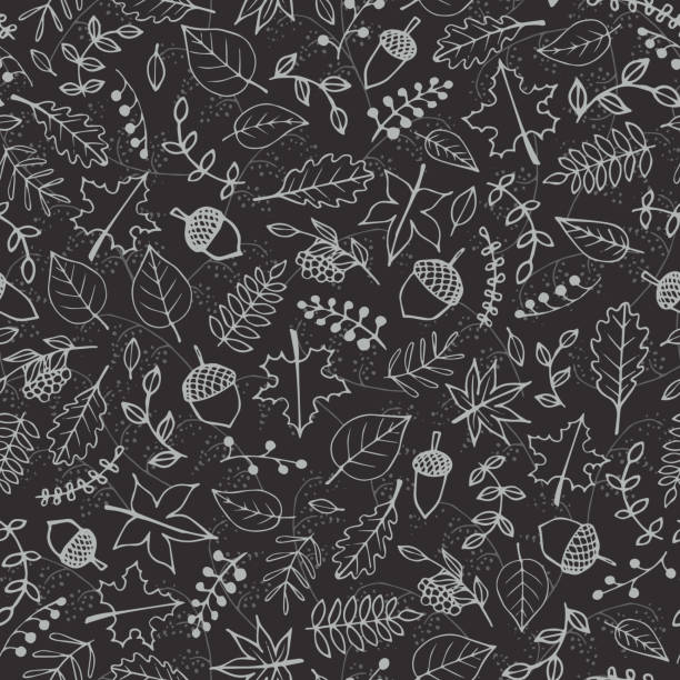 Vector hand drawn pattern with autumn elements contours: foliage, berries and acorns on the dark gray background. Maple, sycamore, birch, beech and oak tree leaves. Chalkboard imitation. Vector hand drawn pattern with autumn elements contours: foliage, berries and acorns on the dark gray background. Maple, sycamore, birch, beech and oak tree leaves. Chalkboard imitation. autumn patterns stock illustrations