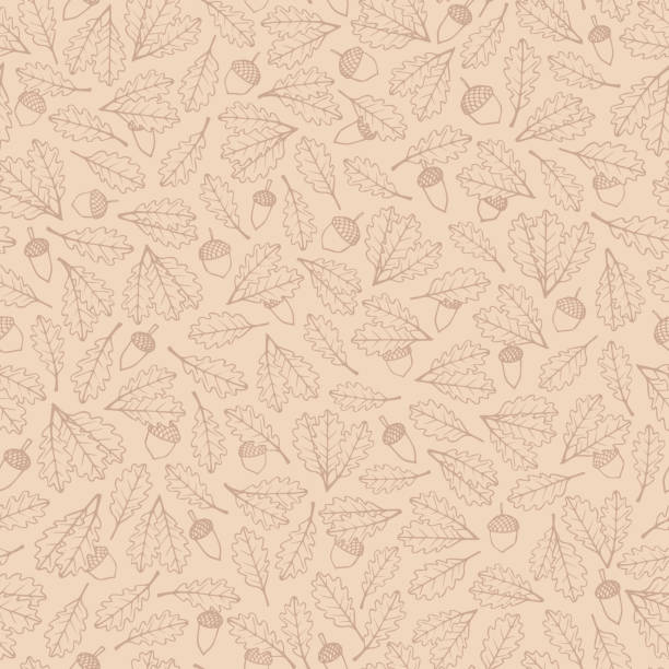 Vector hand drawn pattern with autumn oak leaves and acorns brown contours on the beige background. Vector hand drawn pattern with autumn oak leaves and acorns brown contours on the beige background. Fall ornament with foliage in pastel colors. autumn patterns stock illustrations