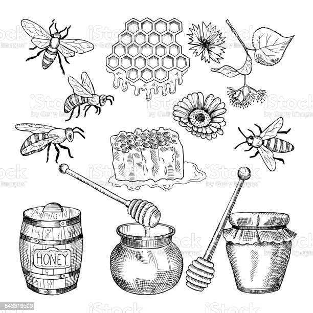 Vector hand drawn pictures of honey products vector id843319520?b=1&k=6&m=843319520&s=612x612&h=4gzlfng3k49n3oz25tijexi97rkdknhmep4vwxc5noy=