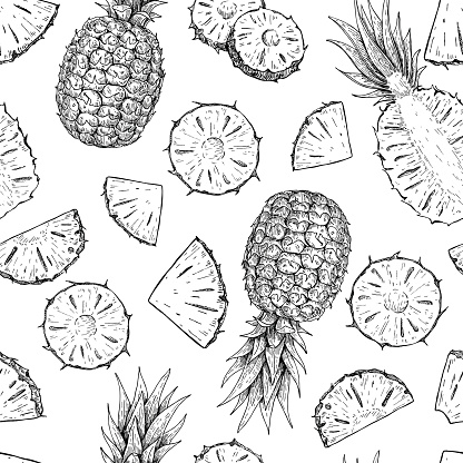 Vector hand drawn pineapple seamless pattern.