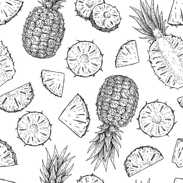 illustrazioni stock, clip art, cartoni animati e icone di tendenza di vettoriale disegnato a mano libera ananas motivo senza interruzioni. - ananas