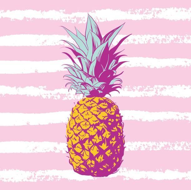 Vector hand drawn pineapple. – artystyczna grafika wektorowa