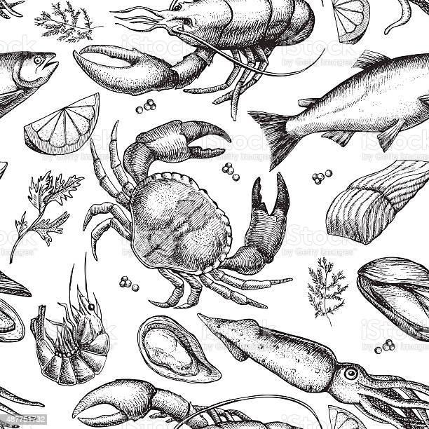 Vector hand drawn seafood pattern vintage illustration vector id487751732?b=1&k=6&m=487751732&s=612x612&h=8wxf8z24gkznkcejg3xmgwh3okqv1nl2mrj65 cerjo=