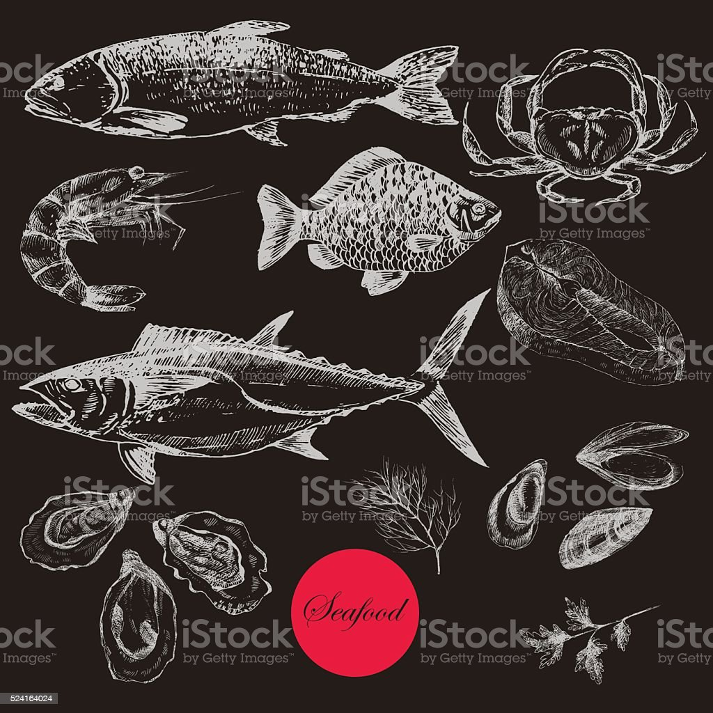 vector hand drawn seafood set - shrimp, crab, lobster, salmon vector art illustration