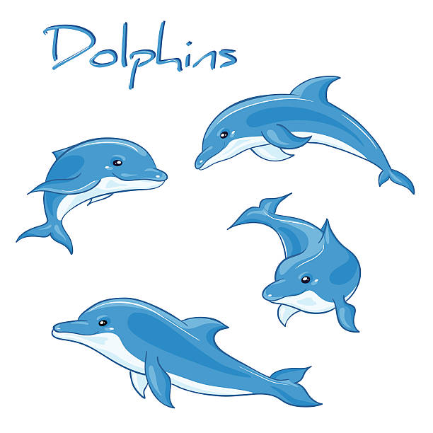 vector hand drawn set of cartoon dolphins in different poses vector hand drawn set of cartoon dolphins in different poses. dolphin stock illustrations