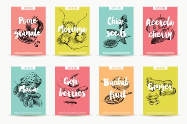 illustrations, cliparts, dessins animés et icônes de main de vecteur dessiné super illustration. - antioxydant