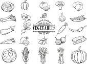 Vector hand drawn vegetables icons set. Decorative retro style collection farm product restaurant menu, market label.