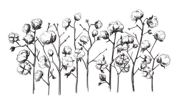 Vektor Dorfhäuser Hand gezeichnete Skizze und Natur – Vektorgrafik