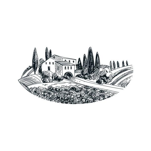 bildbanksillustrationer, clip art samt tecknat material och ikoner med vektor hand dras vingård illustration - vinodling
