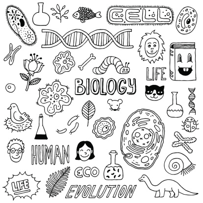 Vector hand-drawn images biology icons