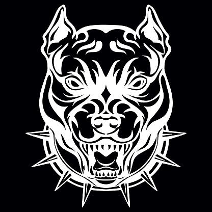 Vector head of mascot pitbull isolated on black