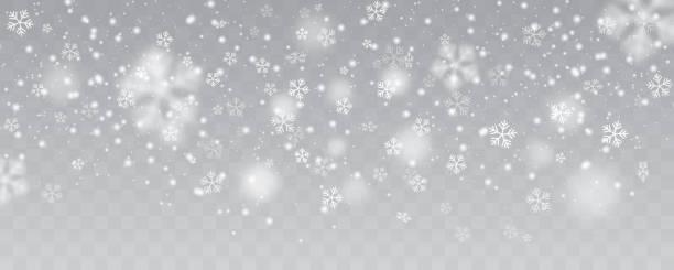 ベクトル豪雪、異なった形および形態での雪片。透明な背景に多くの白いチル要素。白い雪が宙を舞います。雪のフレークは、雪の背景。 - 雪景色点のイラスト素材/クリップアート素材/マンガ素材/アイコン素材