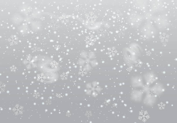 Vector heavy snowfall, snowflakes in different shapes and forms. Many white cold flake elements, swirls on transparent background. White snowflakes flying in the air. Vector heavy snowfall, snowflakes in different shapes and forms. Many white cold flake elements, swirls on transparent background. White snowflakes flying in the air. black white snow scene silhouette stock illustrations