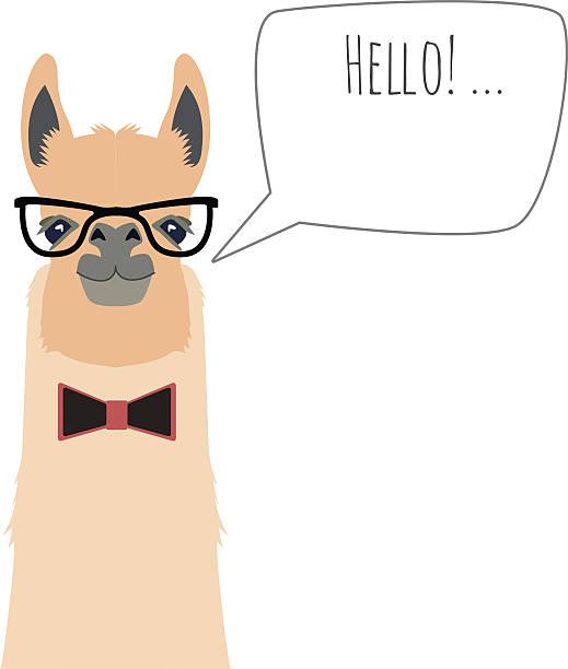 vector hipster flat lama wearing bowtie and glasses saying hello - markenbrillen stock-grafiken, -clipart, -cartoons und -symbole