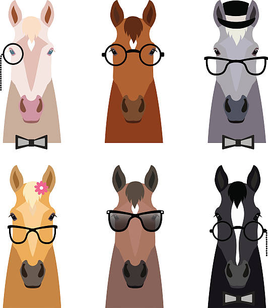 Vector hipster horse head in glasses ,bow. Flat cartoon style – Vektorgrafik