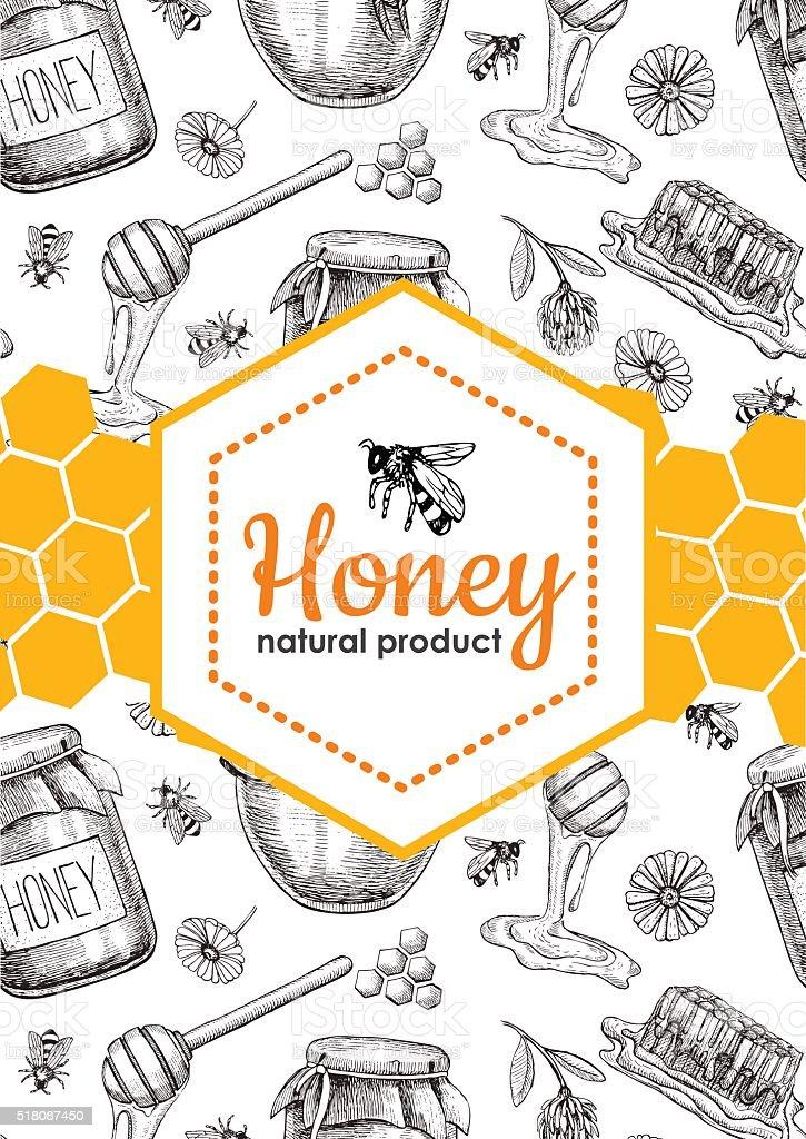 Vector Honey Bee Hand Drawn Illustrations Honey Banner Poster Stock
