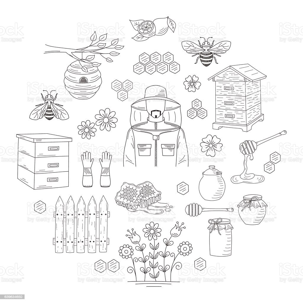 Vector honey collection with beekeeping elements - Illustration vectorielle