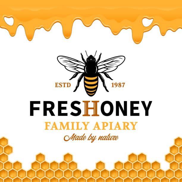 illustrazioni stock, clip art, cartoni animati e icone di tendenza di vector honey label template - miele dolci