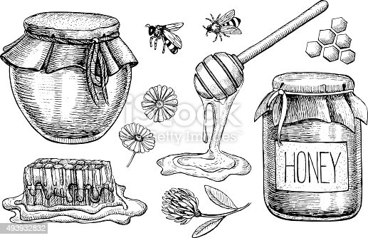 istock Vector honey set. Vintage hand drawn illustration 493932832