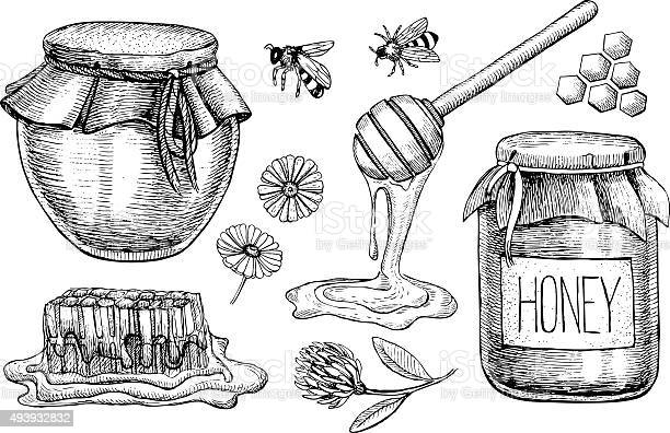 Free honey pot Images, Pictures, and Royalty-Free Stock