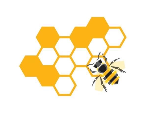 vektor-waben mit bienen-hintergrund-design-elemente isoliert - bienenwachs stock-grafiken, -clipart, -cartoons und -symbole