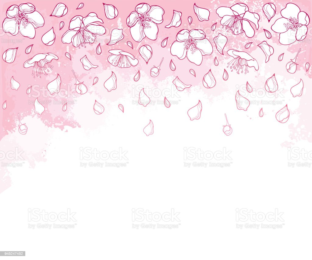 vector horizontal composition with outline falling apple flower petal and bud in white on the
