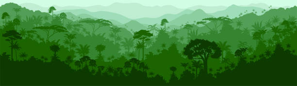 vector horizontal seamless tropical rainforest jungle background - animals background stock illustrations