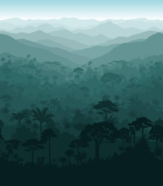 Vector horizontal seamless tropical rainforest Jungle background Vector horizontal seamless tropical rainforest Jungle background amazon stock illustrations