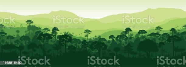 Vector Horizontal Seamless Tropical Rainforest Jungle Forest Background — стоковая векторная графика и другие изображения на тему Азия