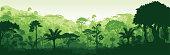 istock Vector horizontal tropical rainforest Jungle background 1249040981