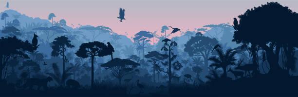 Vector horizontal tropical rainforest Jungle background with animals Vector horizontal tropical rainforest Jungle background with animals javelina stock illustrations