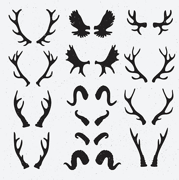 vector horns set silhouette on the grunge hipster background. - deer antlers stock illustrations, clip art, cartoons, & icons