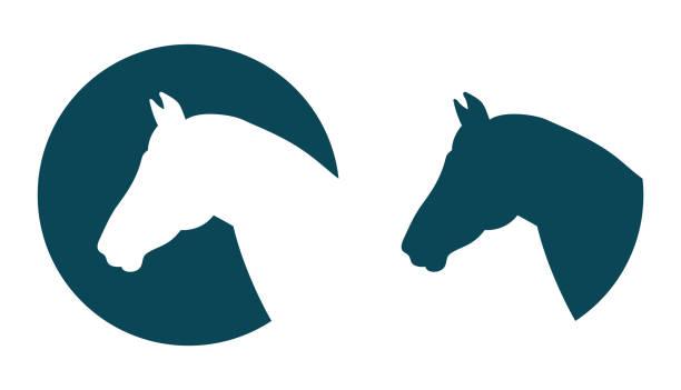 ilustraciones, imágenes clip art, dibujos animados e iconos de stock de icono principal de caballo vector - caballo