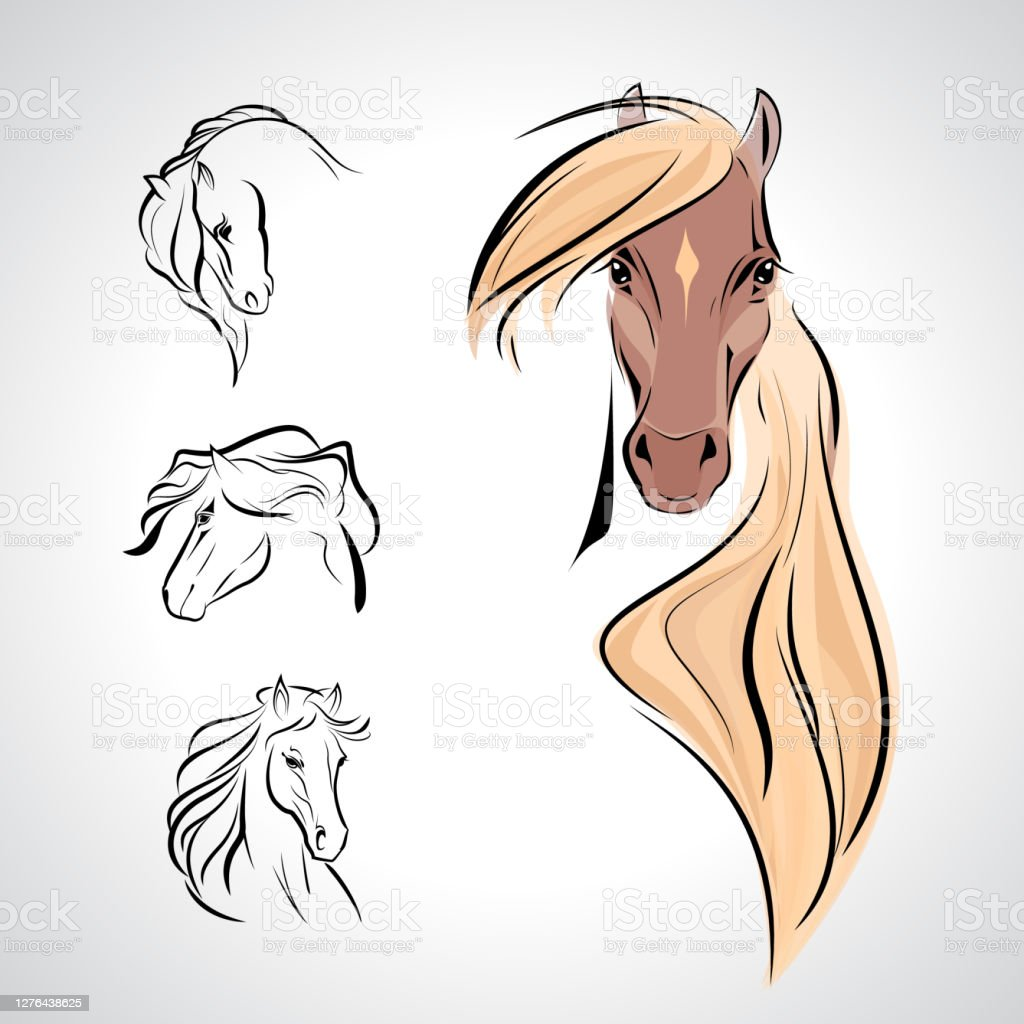 Vector Horse Head Logo Set Sign Symbol Icon Horse Sketch Tattoo Illustration Wallpaper Background Stock Illustration Download Image Now Istock