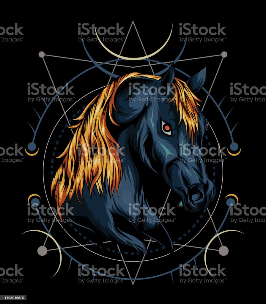 Vector Horse Logo Design Head Horse Illustration With Ornament Background Stock Illustration Download Image Now Istock