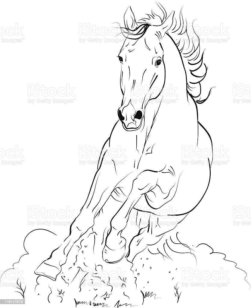 vector horse vector art illustration